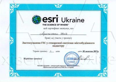 25-сертификат