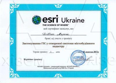 26-сертификат
