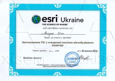 28-сертификат