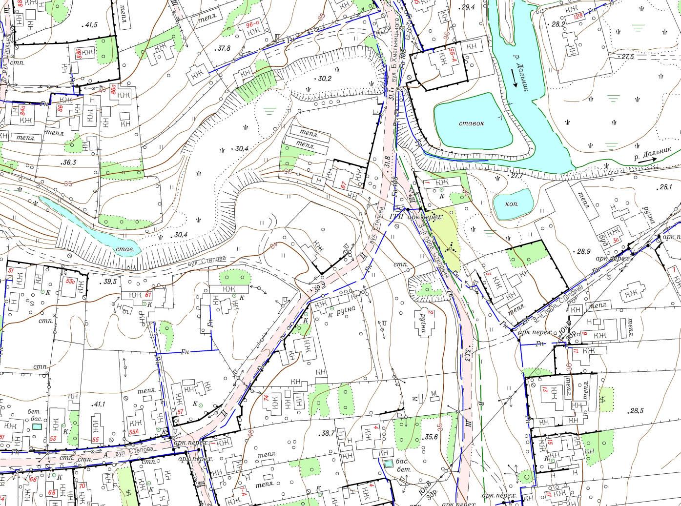 Фрагмент топографічного плану М1:2000 с. Великий Дальник